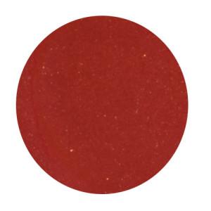 persimmon-lipstick-300×300